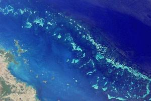Great Barrier Reef Australia S Great Natural Wonder